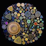 de-pod-mikroskopem